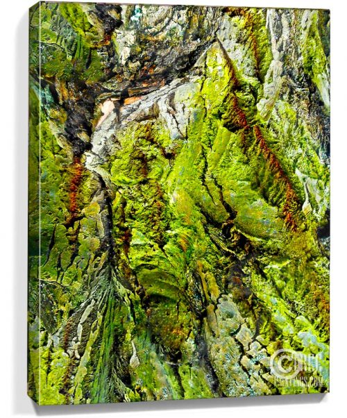 abstract tree art for sale
