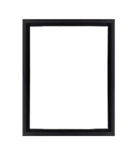 willow-canvas-floater-frame