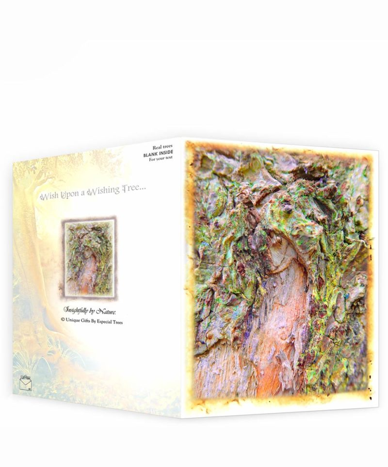 tree art greeting cards