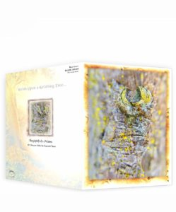 Tree Artwork Greeting Card Sku13253447