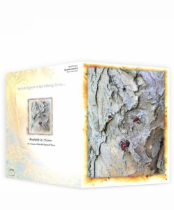 Tree Artwork Greeting Card Sku#14016453