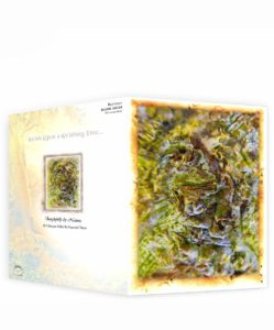 Tree Artwork Greeting Card Sku#1639513
