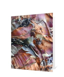 Tree Art Greeting Card Sku#2273242