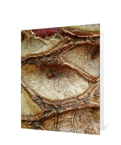 Tree Art Greeting Card Sku#3245252