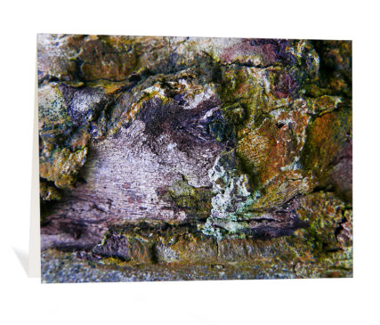 tree art greeting card