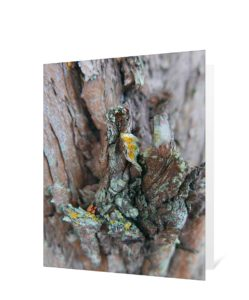 Tree Art Greeting Card Sku#3442871