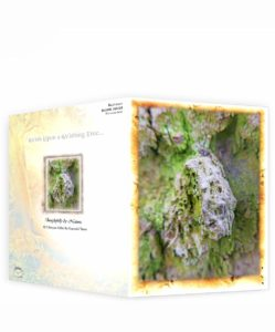Tree Artwork Greeting Card Sku#43572422