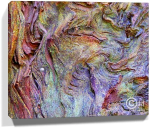 Tree Wall Artwork Canvas Sku#11208