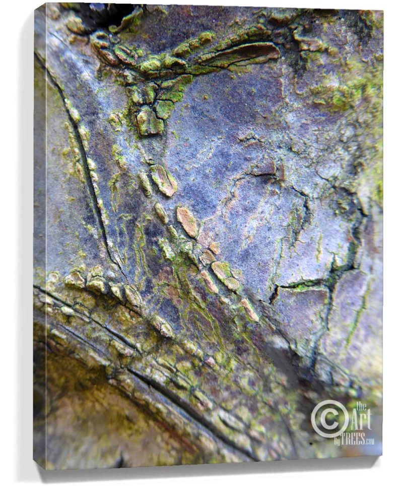 tree artwork