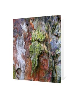 Tree Art Greeting Card Sku#1312557