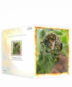Tree Art Greeting Card Sku#24438537