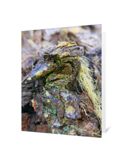 Tree Art Greeting Card Sku#3275274