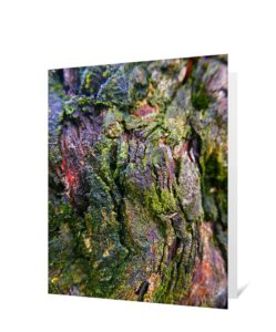 Tree Art Greeting Card Sku#3662568