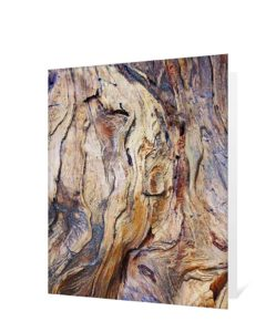 Tree Art Greeting Card Sku#3772612