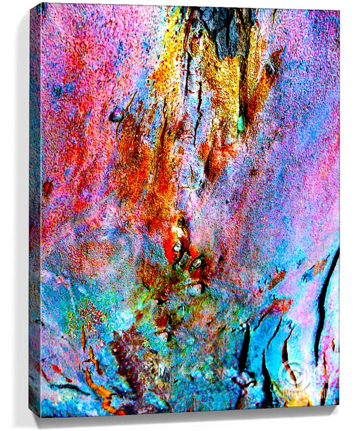 Tree wall art canvas trees artwork for sale sku 2213 for Artwork on canvas for sale
