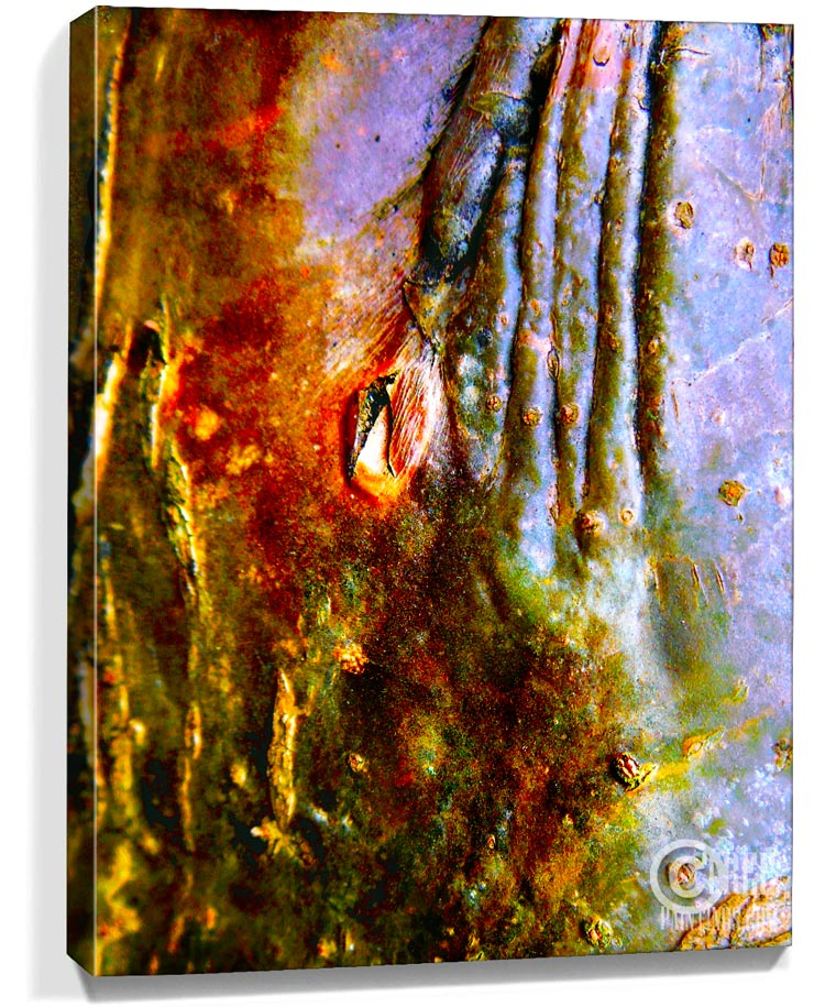 trees art prints for sale
