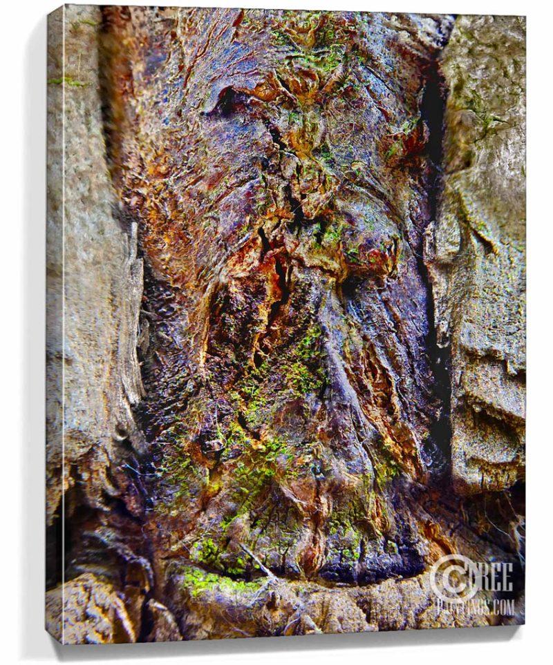 tree art prints