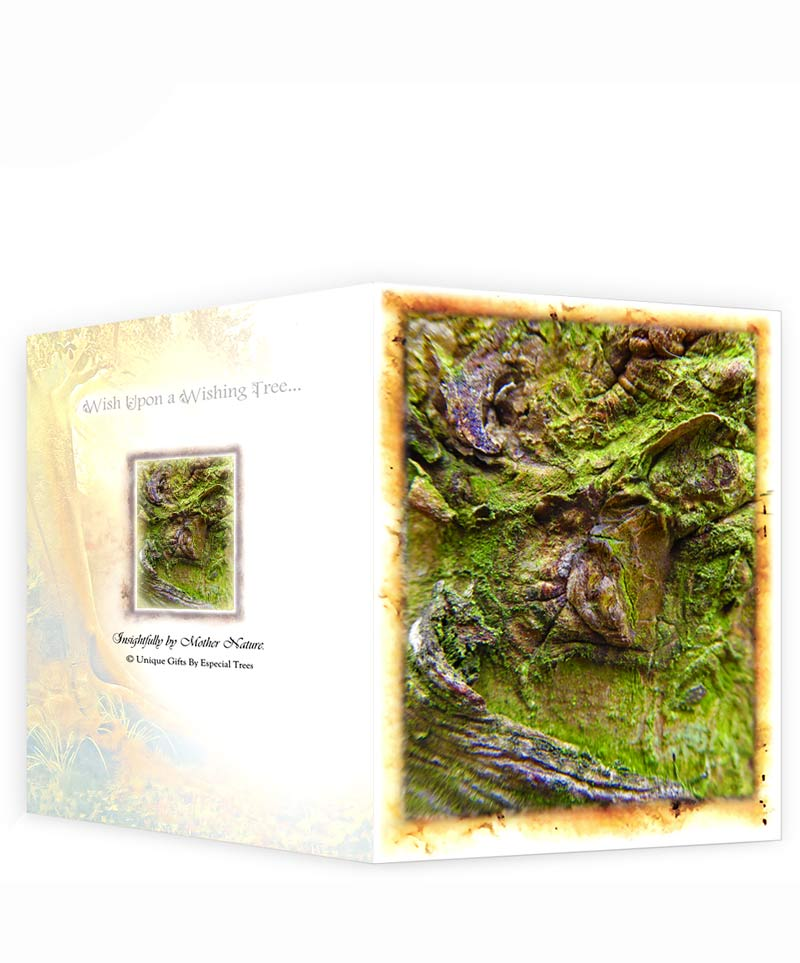 tree gifts greeting card