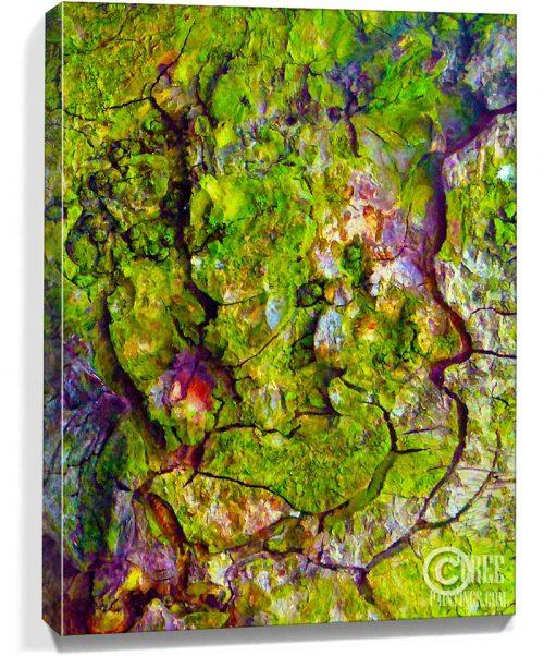 tree artwork print for sale