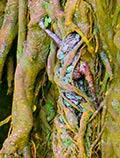 tree art wall canvas