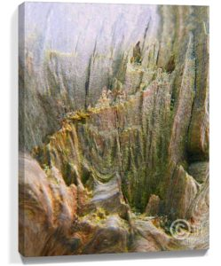 Tree Art Wall Canvas Sku#3321778