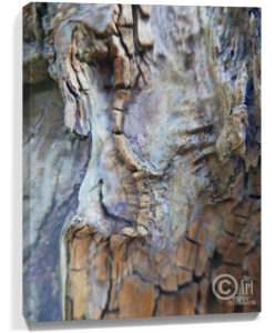 Tree Art Wall Canvas Sku#3662732