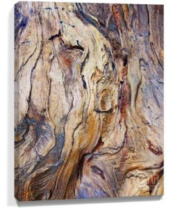 Tree Art Wall Canvas Sku#3772612