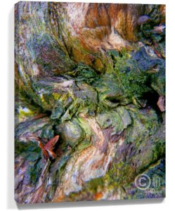 Tree Art Wall Canvas Sku#3382774